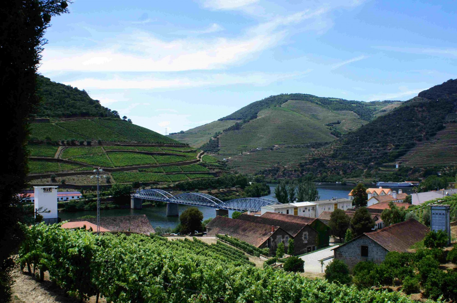 Looking back down Portugal's Douro Valley (the origin of Porto's delicious port wines) from Pinhão